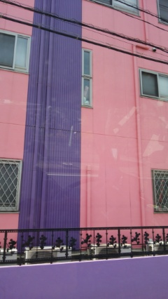 ピンクと紫の